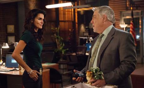 Rizzoli & Isles Season 7 Episode 12 Review: Yesterday, Today, Tomorrow