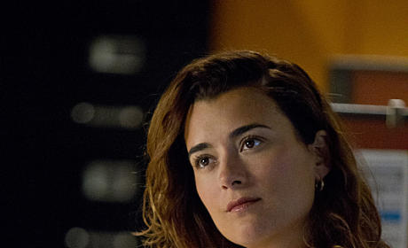 "NCIS Showrunner: Ziva's Exit Will Be ""Heart-Wrenching"""