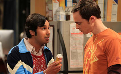 """The Big Bang Theory Review: """"The Wildebeest Implementation"""""""
