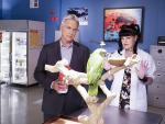 Exotic Bird in the Lab - NCIS