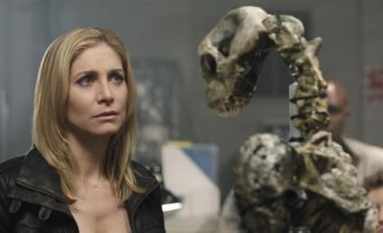 "Elizabeth Mitchell Teases ""Dark Season"" Ahead on V"