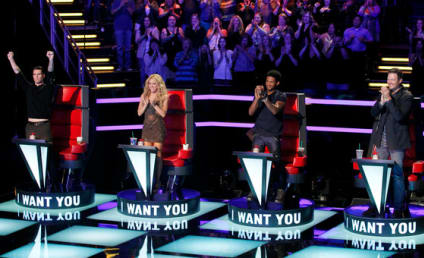 The Voice Season 6 Premiere: Judging the Judges