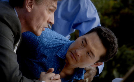 Chin Arrrested - Hawaii Five-0 Season 5 Episode 18