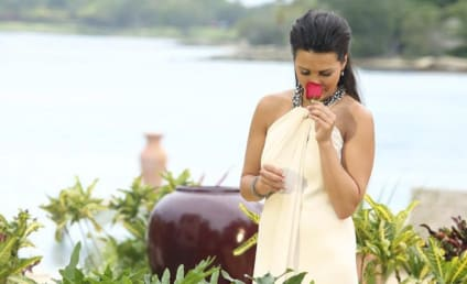 The Bachelorette Review: Who did Andi Choose?