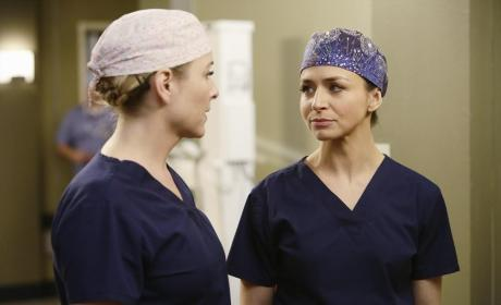Grey's Anatomy Season 11 Episode 14 Review: The Distance