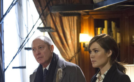 The Blacklist: Watch Season 1 Episode 14 Online