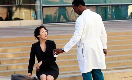 Grey's Anatomy Review: Cristina and the Chocolate Factory