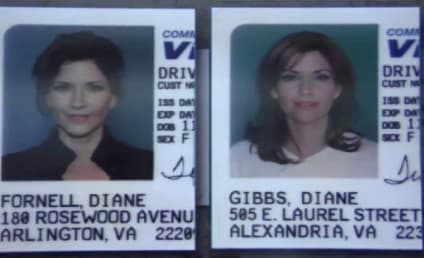 NCIS Sneak Peeks: You Look a Lot Like Our Ex-Wife!