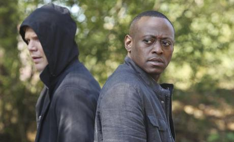 Resurrection: Canceled After Two Seasons at ABC