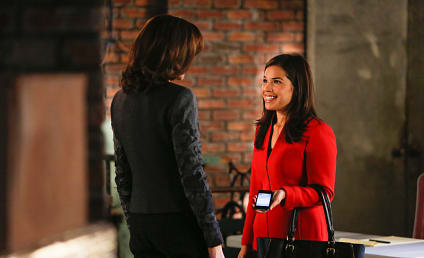 The Good Wife: Watch Season 5 Episode 8 Online