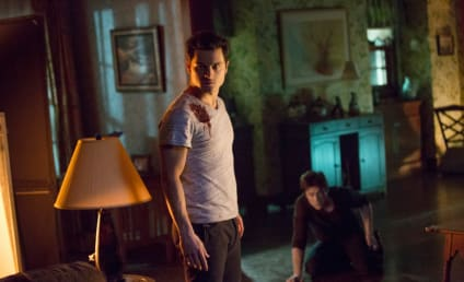 Michael Malarkey Upped to Vampire Diaries Series Regular
