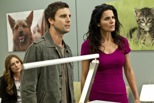 Colin Egglesfield on Rizzoli & Isles