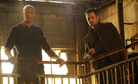 Agents of S.H.I.E.L.D. Season 3 Episode 6 Review: Among Us Hide...
