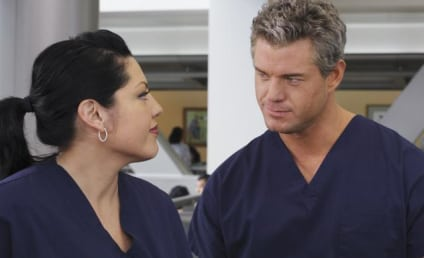 Sloan, Callie to Team Up in Grey's Anatomy Season Opener