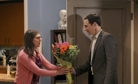 The Big Bang Theory Season 9 Episode 11 Review: The Opening Night Excitation