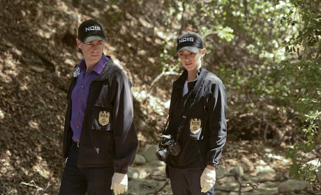 McGee and Bishop - NCIS