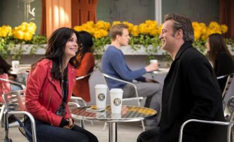 Matthew Perry on Cougar Town