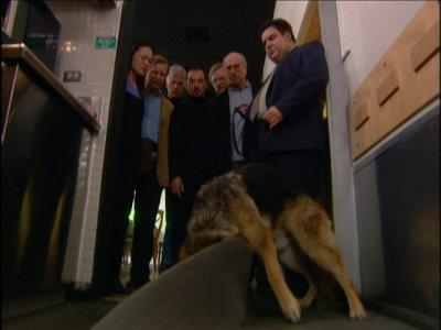 The Corpse Sniffing Dog Picture