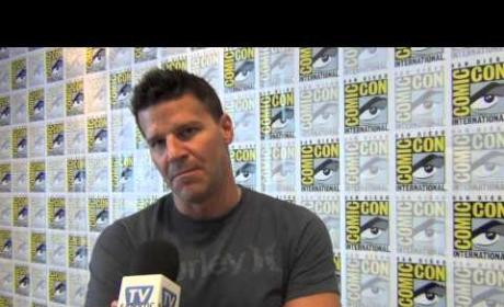 David Boreanaz: Excited for Bones Season 9, New Eagles Coach