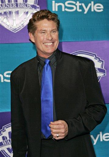 Hasselhoff Returns to TV