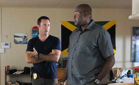 Hawaii Five-0: Watch Season 4 Episode 8 Online