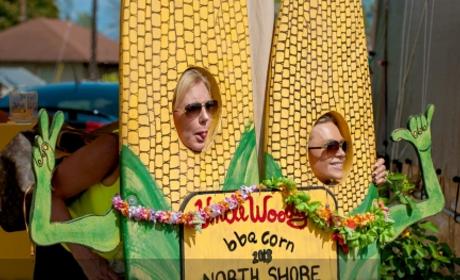 Real Housewives of Orange County Recap: Aloha, Ladies!