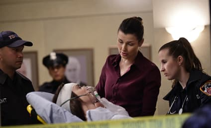 Blue Bloods Season 5 Episode 17 Review: Occupational Hazards