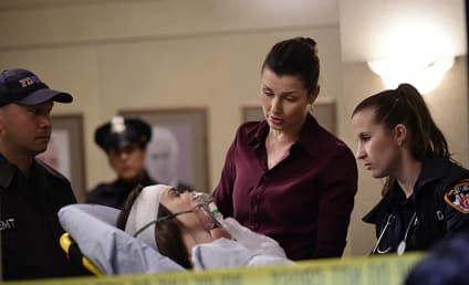Blue Bloods Season 5 Episode 17 Review: Occupational Hazards