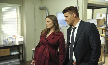 Bones' Baby Birth to Involve ...