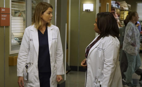 Do Not Give Me That Look - Grey's Anatomy Season 12 Episode 2