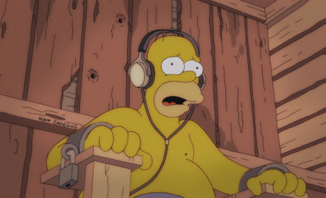 What Happened To Homer?