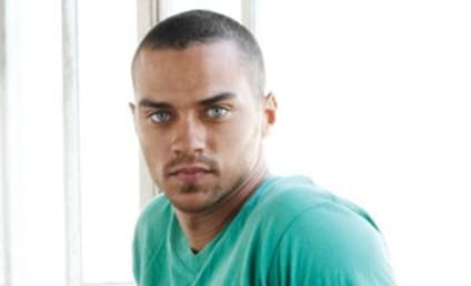 Jesse Williams Confirmed For Grey's Anatomy Season Seven Cast