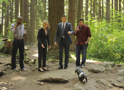 Watch Psych Season 7 Episode 8 Online
