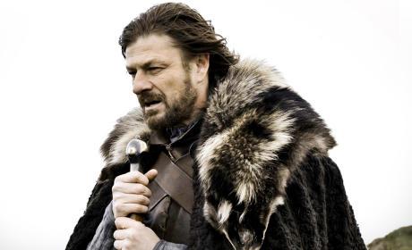 Eddard Stark Picture