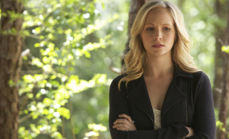 Vexed Caroline