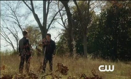 Extended Vampire Diaries Trailer: Can There Be a Truce?