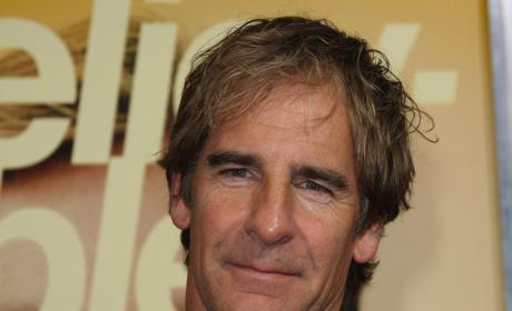 Scott Bakula to Guest Star on Two and a Half Men