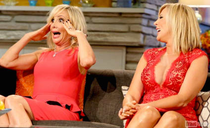 The Real Housewives of Orange County: Watch Season 9 Episode 20 Online