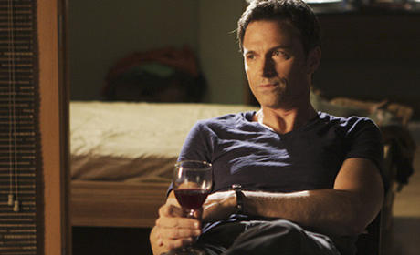 Private Practice Spoilers From Tim Daly