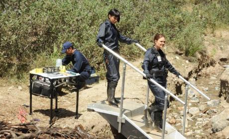 Bones: Watch Season 9 Episode 8 Online