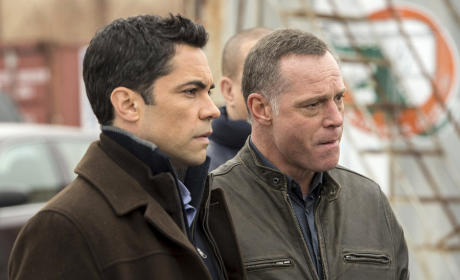Law & Order: SVU Season 16 Episode 20 Review: Daydream Believer