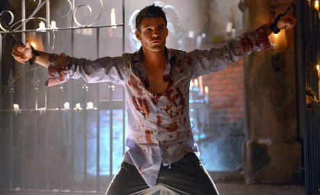 The Originals Spoilers, Photos: A Bloody Mess