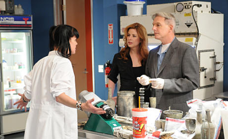"NCIS Review: ""Jurisdiction"""