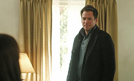 Michael Weatherly to Guest Star on Major Crimes