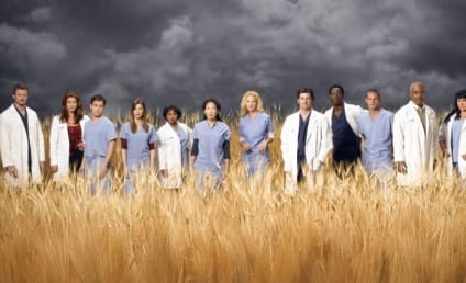 Grey's Anatomy Cast Tops Magazine's List of 2006's Best Entertainers