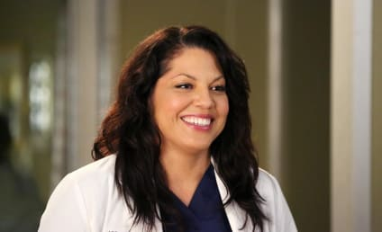 Sara Ramirez Confirms Grey's Anatomy Exit