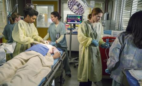 Back to Work - Grey's Anatomy Season 11 Episode 9