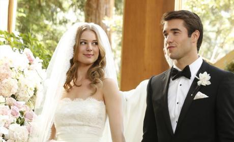 Emily's Wedding Plan