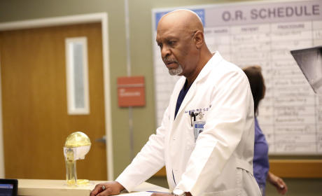 We Still Call Him the Chief, Too - Grey's Anatomy Season 12 Episode 2
