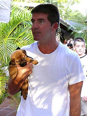 American Idol Picture of the Day: Simon Cowell Makes Nice
